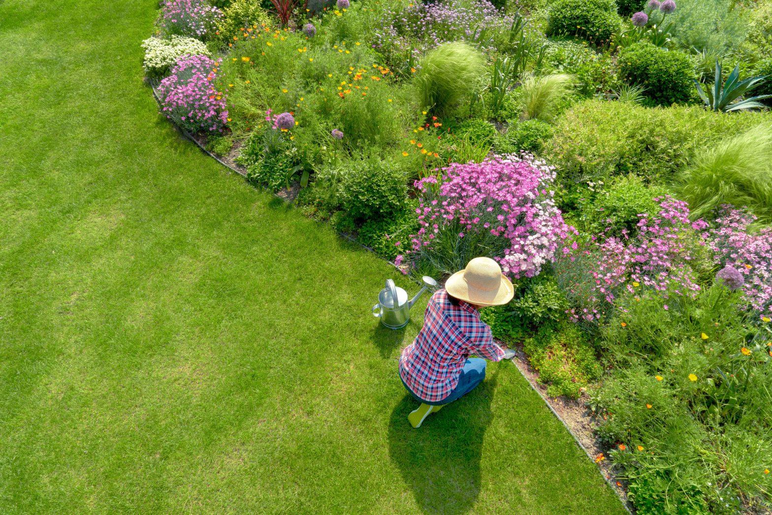 Jak samodzielnie urządzić ogród?